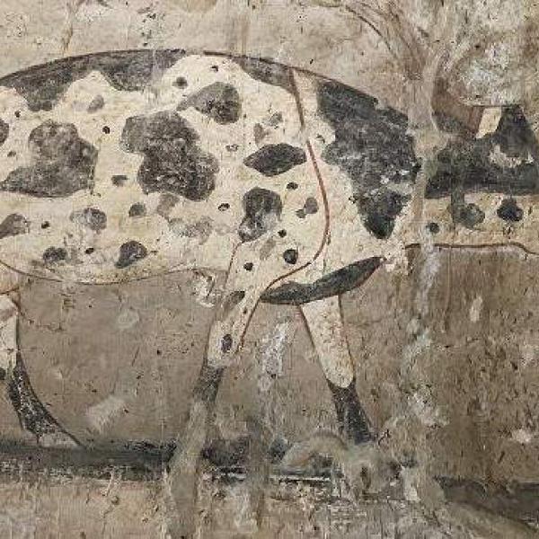 В Египте в гробницах обнаружили фрески